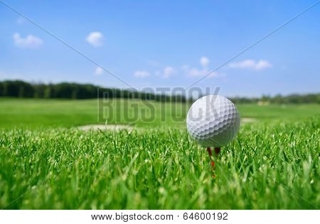 Golf ball in grass.