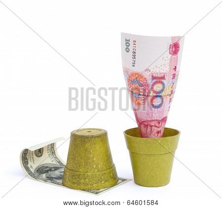 Blooming Rmb And Rotten Usd With Clipping Path