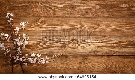 Wooden background with flowers.