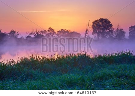 Beautiful Dawn Over  The Narew River, Poland. Nature Reserve.