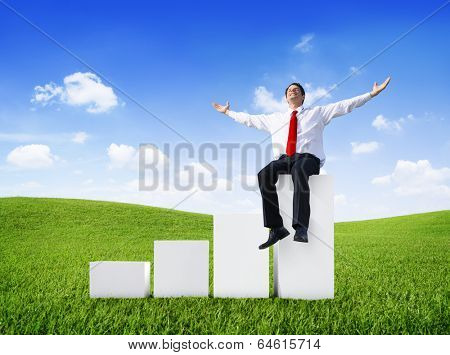 Successful Businessman Relaxing in an Open Field