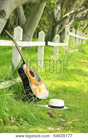Single Guitar Against Green Grass