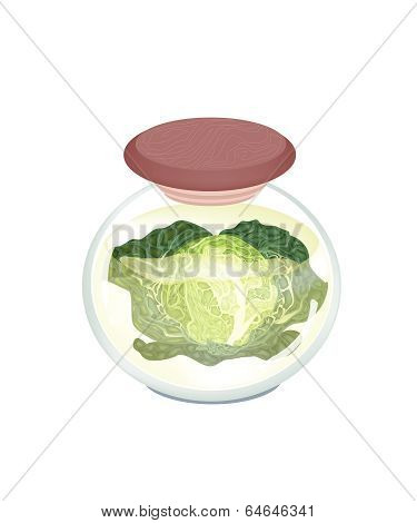 A Jar Of Delicious Pickled Savoy Cabbage