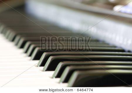 Electronic Organ Keyboard Keys