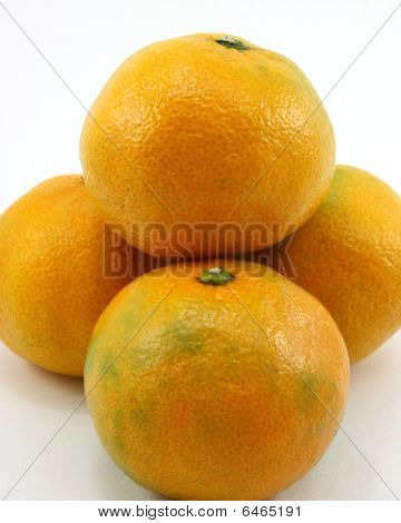 Japanese oranges, organic import