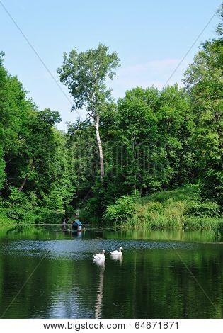 Summer day on the lake. Alexandria Park, the city of Bila Tserkva, Kyiv region. Ukraine.