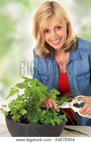 Smiling woman cutting fresh herbs from a planter.