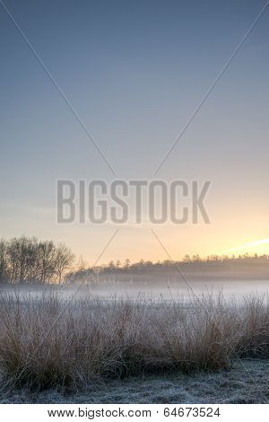 Sunrise Meadow Mist Hoar Frost