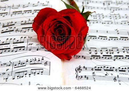 Rose on Sheet Music