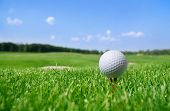 stock photo of balls  - Golf ball in grass - JPG