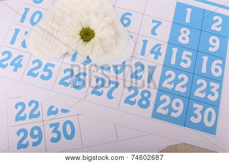 Sanitary pads, calendar and white flower on blue calendar background