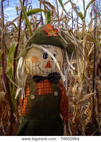 Scarecrow In Corn Fields