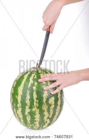 Woman cutting watermelon isolated on white