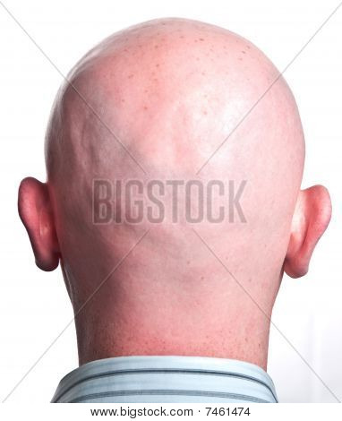 Close Up Male Shaved Bald Head