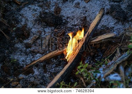 Flame On The Ground