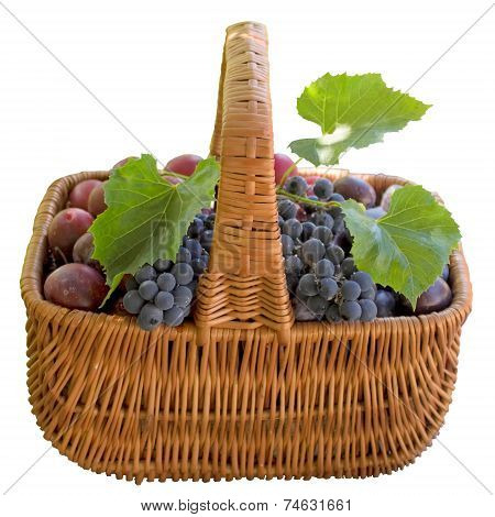 Basket With Fresh Plums And Grapes.