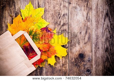 Colorful autumn leaves and wood background.