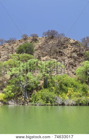 Island In Lake Baringo In Kenya.