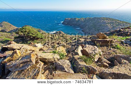 Cape Of Cap De Creus Peninsula, Catalonia, Spain