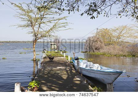 Jetty At Lake Naivasha, Kenya