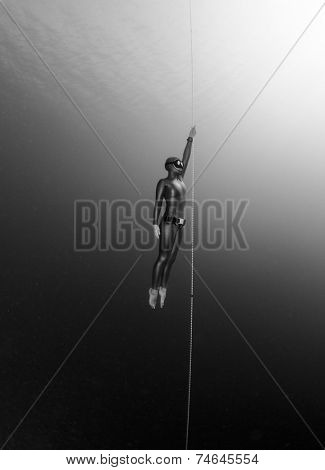 Free diver ascending along the rope. Free immersion discipline