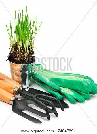 Rake, Shovel, Rubber Gloves, Steel Pot With Green Grass