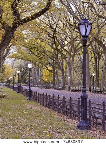 Autumn colors in Central Park, Manhattan New York
