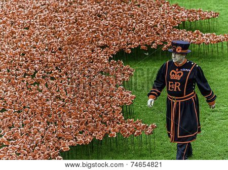Poppies At Tower London/Yeoman Warders
