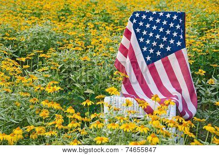 American flag in daisies