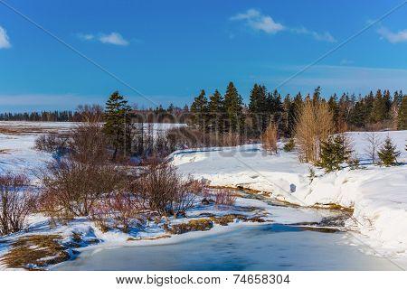 A frozen stream in rural Prince Edward Island, Canada.