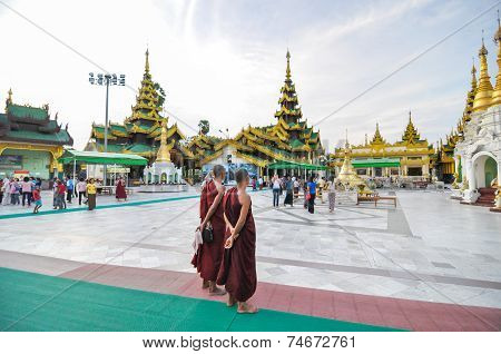 Rangoon, Myanmar - October 11, 2013: Unidentified Young Monks At Shwedagon Pagoda