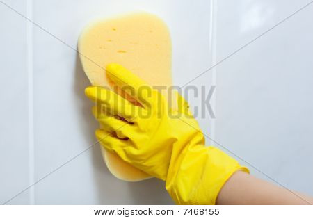 Close-up Of A Woman Cleaning With A Sponge