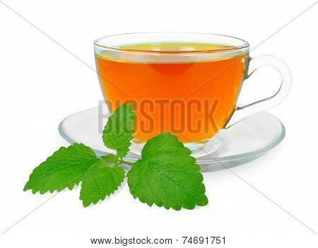 Lemon balm tea