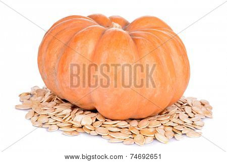Pumpkin and seeds isolated on white