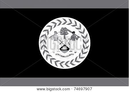 Illustrated Grayscale Flag Of The Country Of Belize