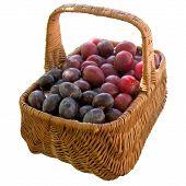stock photo of crude  - Plum Fruit Crude Basket Ripe Sweet Product Fruit Food is A Lot Of - JPG