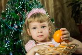 picture of tangerine-tree  - Girl with tangerines on background of Christmas tree - JPG