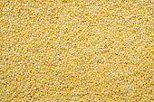 foto of millet  - food background of yellow grains of millet closeup - JPG