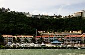 pic of conquistadors  - Boats docked in front of the suites at La Marina part of El Conquistador hotel in Puerto Rico - JPG