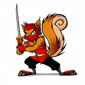 foto of ninja  - Ninja squirrel holding a samurai is ready for action - JPG