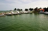 picture of conquistadors  - Boats parked at the dock in la Marina in El Conquistador in Puerto Rico - JPG
