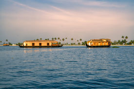 picture of alleppey  - Traditional wooden houseboats in Alleppey region in India - JPG
