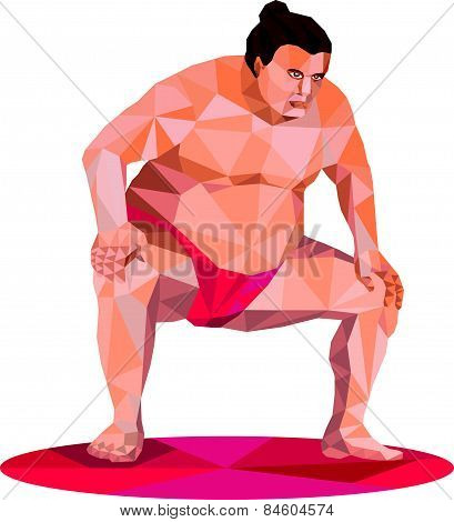 Japanese Sumo Wrestler Squat Low Polygon