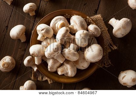 Raw Organic White Mushrooms