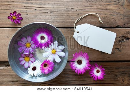 Silver Bowl With Cosmea Blossoms With Empty Label For Copy Space