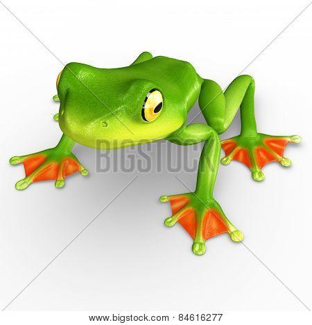 Flyng frog