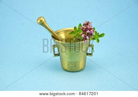 Wild Marjoram Oregano Herbs In Old Brass Mortar