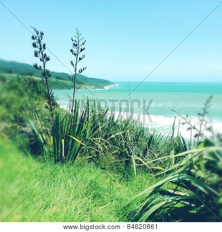 Shoreline and water, Raglan, New Zealand