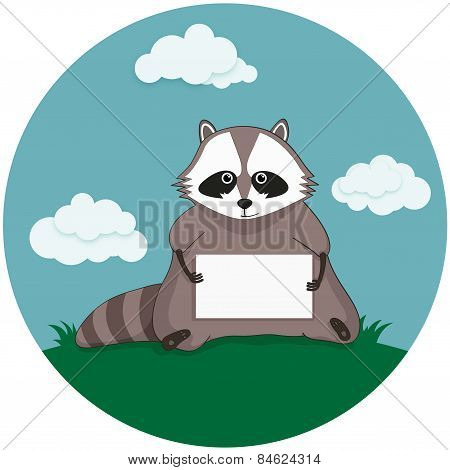 raccoon with paper sheet