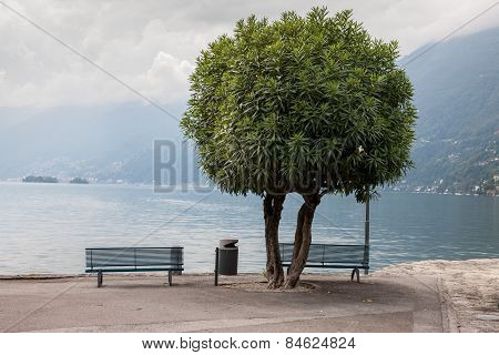 Two lonely benches overlooking the lake Maggiore
